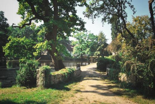 Anglický park u zámku Vrchotovy Janovice