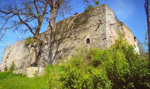 Zřícenina hradu Starý Stránov