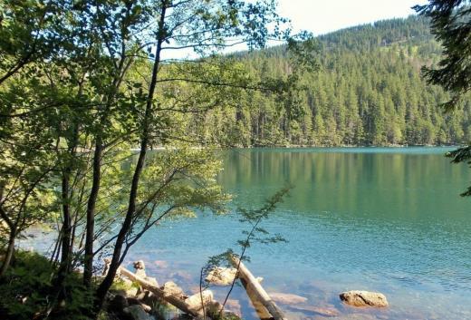 Černé a Čertovo jezero na Šumavě