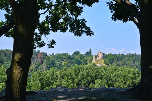 Zřícenina hradu Michalovice