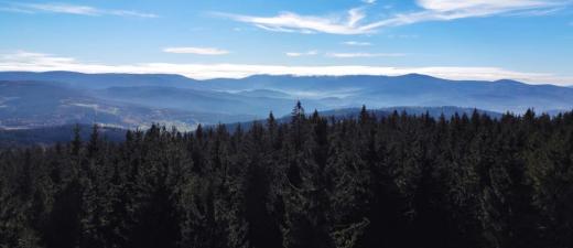 Rozhledna Borůvková hora