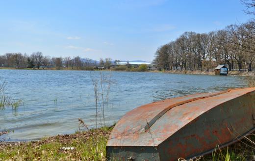 Žárský rybník