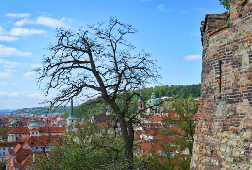Staré zámecké schody a vyhlídka na Prahu