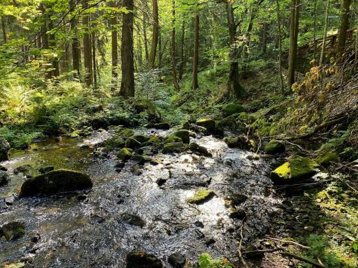 Vodopády na Čisté
