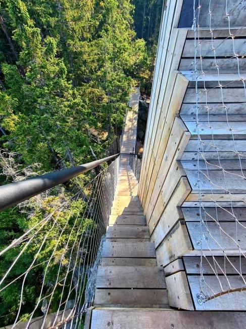 Vyhlídkový lesopark Hlídka na Stráži