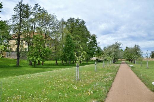 Zámecký park Ctěnice