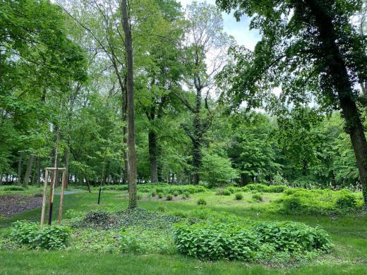 Zámek a zámecký park Měšice