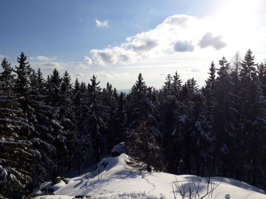 Zbytek vyhlídky - jsou vidět zejména okolní stromy, jen v jednom místě v pozadí prosvítá vzdálený zalesněný kopec.