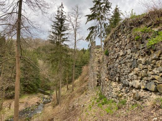 Zřícenina hradu Kožlí