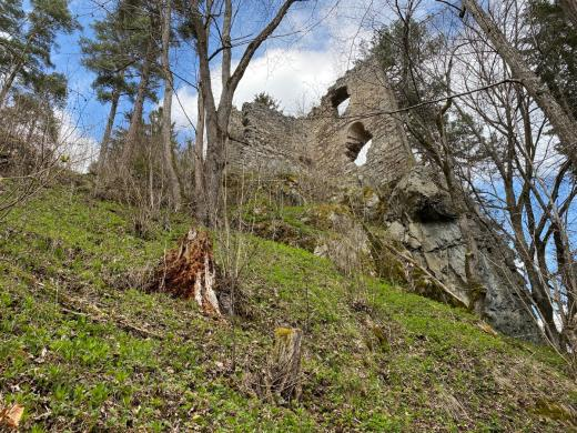 Zřícenina hradu Louzek