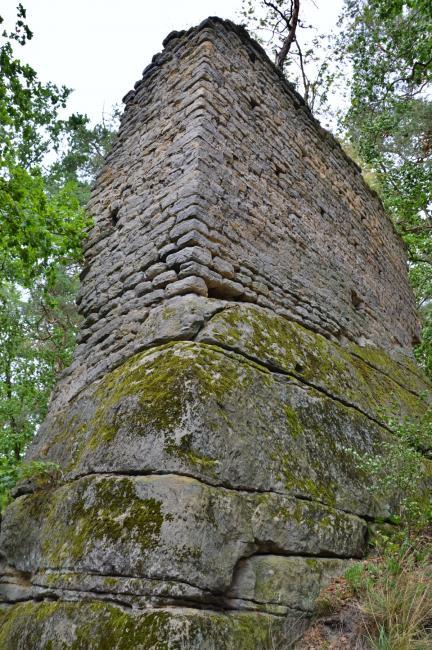 Zřícenina hradu Milčany u Milčanského rybníka
