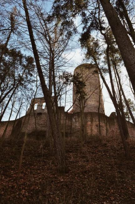 Zřícenina hradu Žebrák